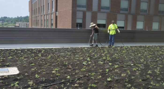 Greenroof at Franklin Woods Hospital first for MSHA system
